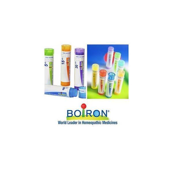 BERBERIS VULGARIS GR 6DH BOIRON