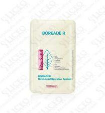 BOREADE R STICK REPARADOR 11 ML